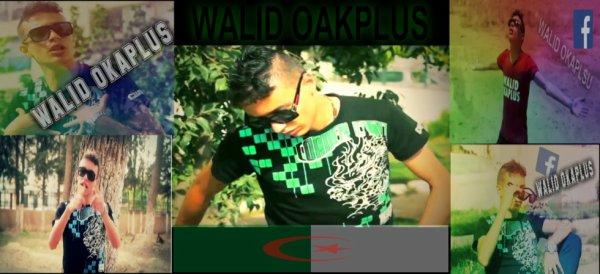 walid okaplus