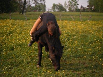'' L'equitation est le seul sport individuel qui se pratiquent a deux ''