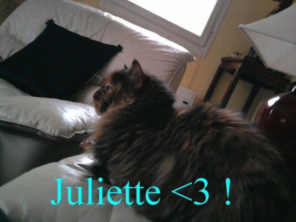 Juliette <3 !
