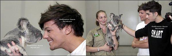 • 18 Avril :  -  Les garçons interviewé avec sea 90.9  -  Les garçons en rencontre avec un koala, Toujours à Brisbane. ( Australie )