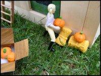 ~ Décorations d'halloween ~