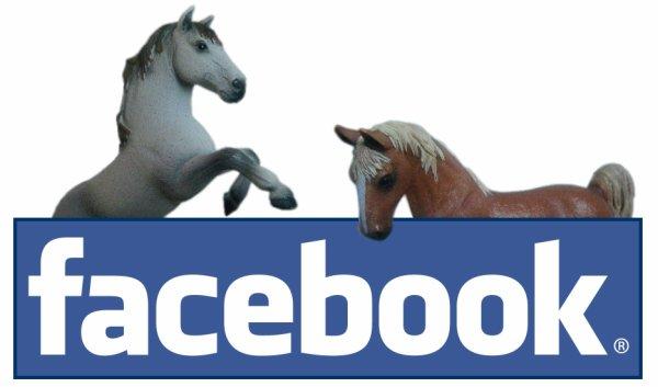 ~ Page Facebook ~