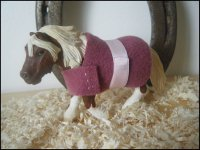 ~ Couvertures pour les poney ~