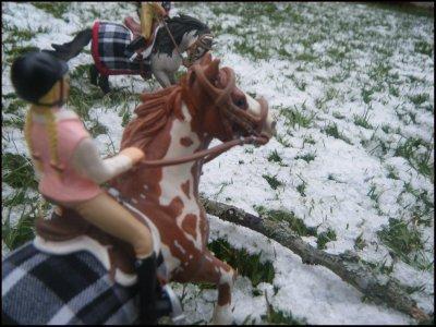 ~ Balade dans la neige ~