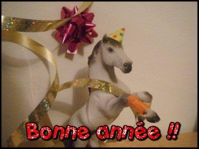~ Bonne année ~