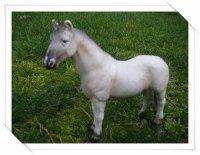 ~ Présentation des chevaux ~