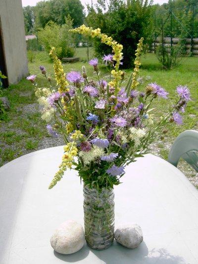bouquets fleurs des alpages du jura