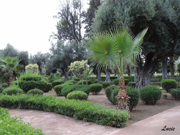 Marrakech - Jardin