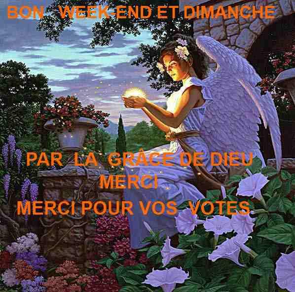 BON DIMANCHE  ET WEEK-END   GROS  MERCI