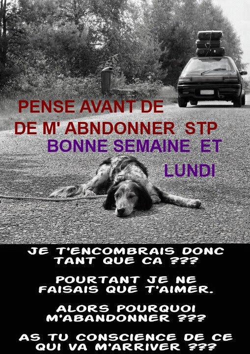 BON LUNDI  << EXCUSER MOI POUR  MON RETARD J AI ÉTÉ MALADE >>
