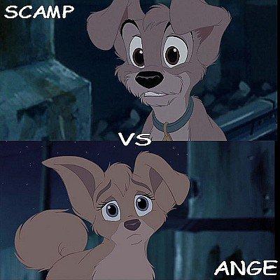 Vous préférer Scamp ou Ange ???