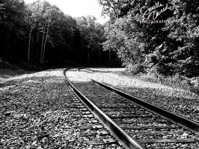 Le Train, Dunkerque