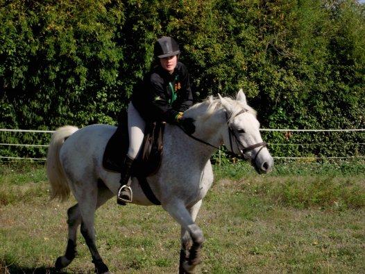 """.   """"Le respect du cheval, c'est la fondation de la liberté.""""  ."""