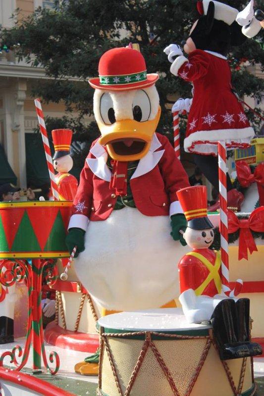 La saison de Noël est commencée !!