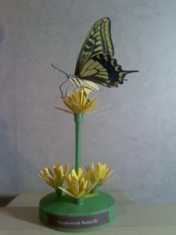Papercraft - Un Papillon