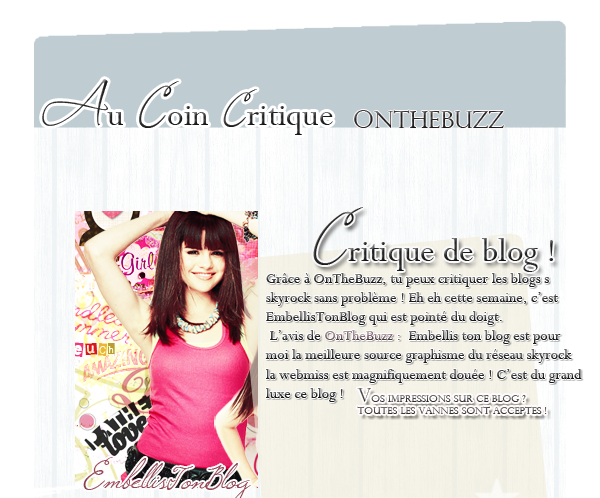 Article second : Critique de blog