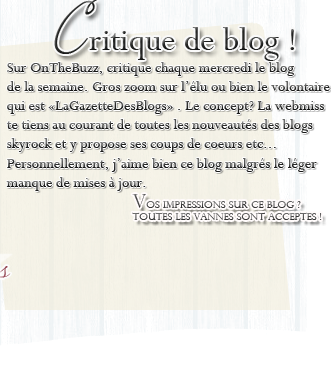 Article dixième : Critique de blog