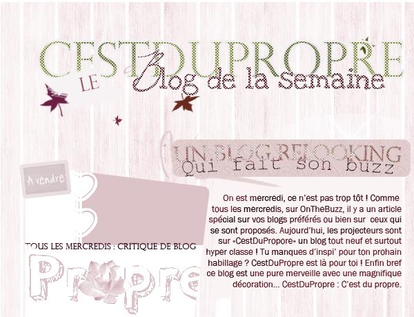 Article dixneuf : CestDuPropre, le blog de la semaine