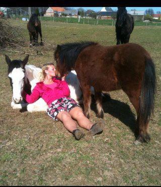 C'est chevaux la, mon apporter tout le nécessaire pour  êtres heureuse.