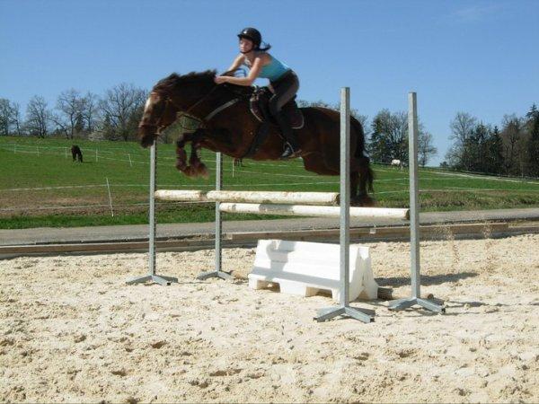 2011# Retrouver la motivation de se fixer des objectifs à cheval... Enfin !