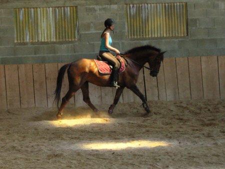 2010# Là où tout le reste est changement, l'équitation, elle, exige de répéter, encore et encore, sans relâche, jusqu'à atteindre la perfection...