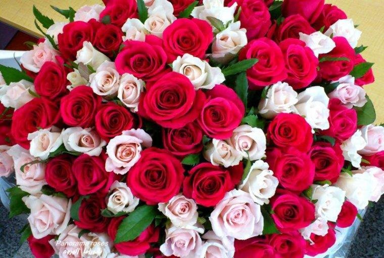 17 changements becca - Enorme bouquet de fleurs ...