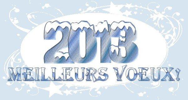 ♥♥♥♥Bonne année 2013♥♥♥♥