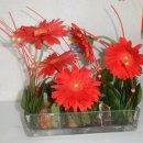 Photo de fleursdebonheur42