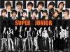 Sommaire Super Junior