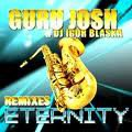 Party Fun 2010 / Guru Josh Project feat Dj Igor Blaska - eternity (2010)