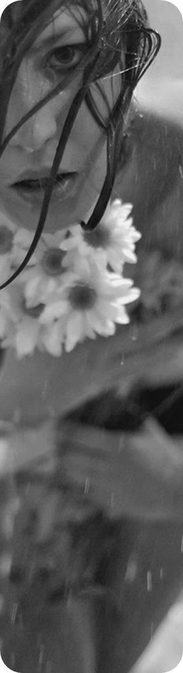 Fragiles beautés