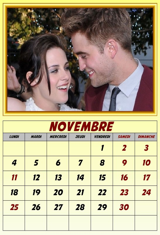 MOIS DE NOVEMBRE 2013