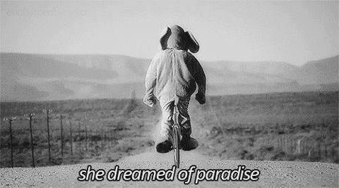 Para_ para_paradise !