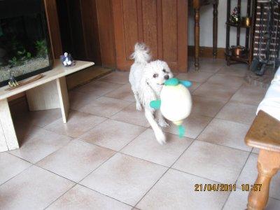 Belle joue au ballon
