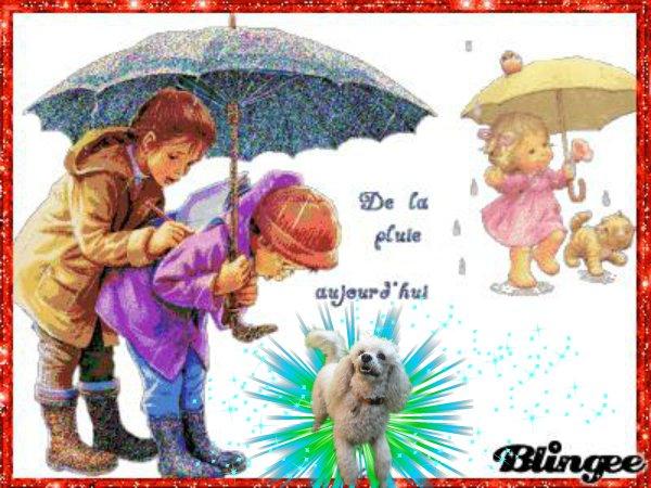 Bonjour Les Amis C Est Encore Sous La Pluie Que Je Vous