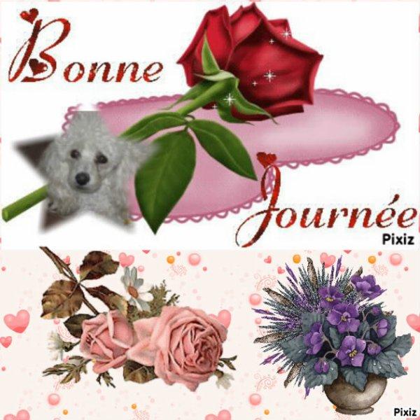 Bonjour Les Amis Je Vous Souhaite Une Bonne Journée A