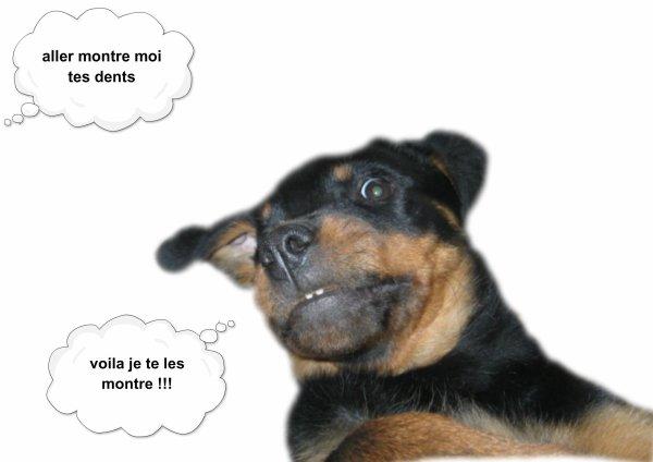 """Résultat de recherche d'images pour """"bonne soirée  comic"""""""