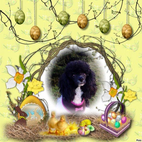 La chasse aux cadeaux !!! Joyeuses Pâques a tous