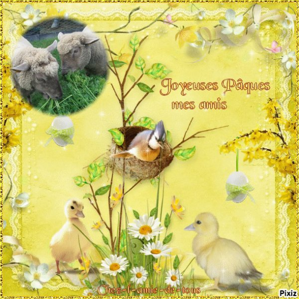 Bonsoir les amis !!! ses jours ci je n'ai pas été très présente sur mon blog !! je vous remercie tous pour vos gentilles visites et commentaires !!! je vous embrasse tous très très fort et vous souhaite a tous une très bonne fin de semaine et de joyeuses Pâques bisous bisous