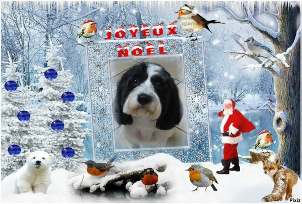 petits cadeaux pour vous !!! joyeux Noël a tous