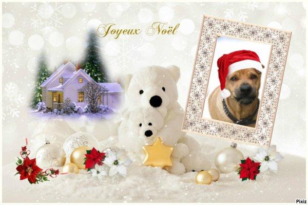 Un très joyeux Noël a tous !!! bisous bisous