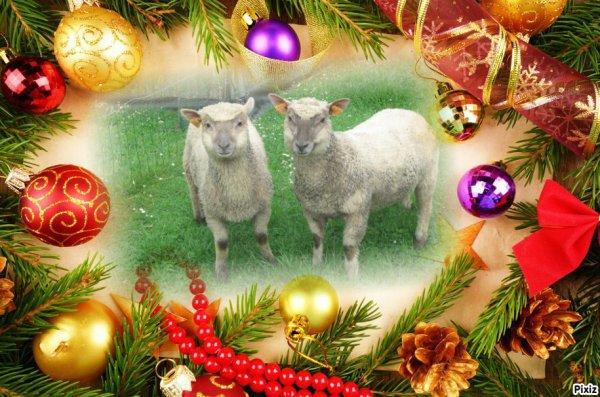 un grand merci a mon amie Nicole pour ses superbe cadeaux bisous bisous et joyeux Noël