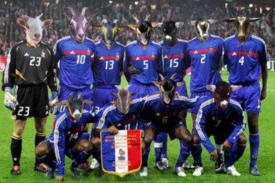 Photo de l'équipe de France 2010 en afrique du sud