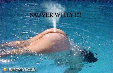Femme balaine : sauver willy