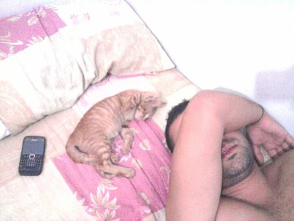 Partage le lit ac le chaton