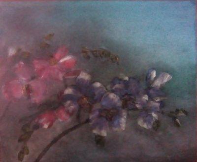 Orchidées dans la nuit