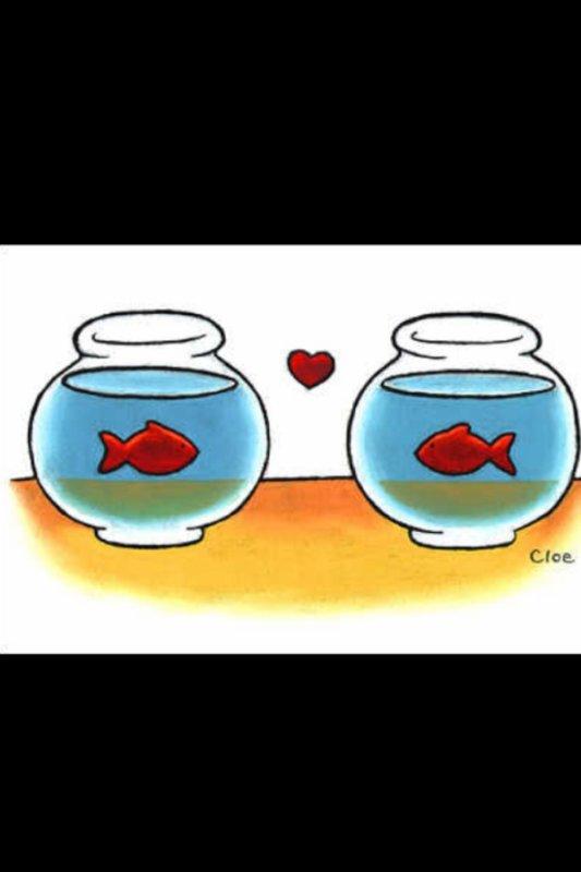 La distance n'interdit pas d'aimer...