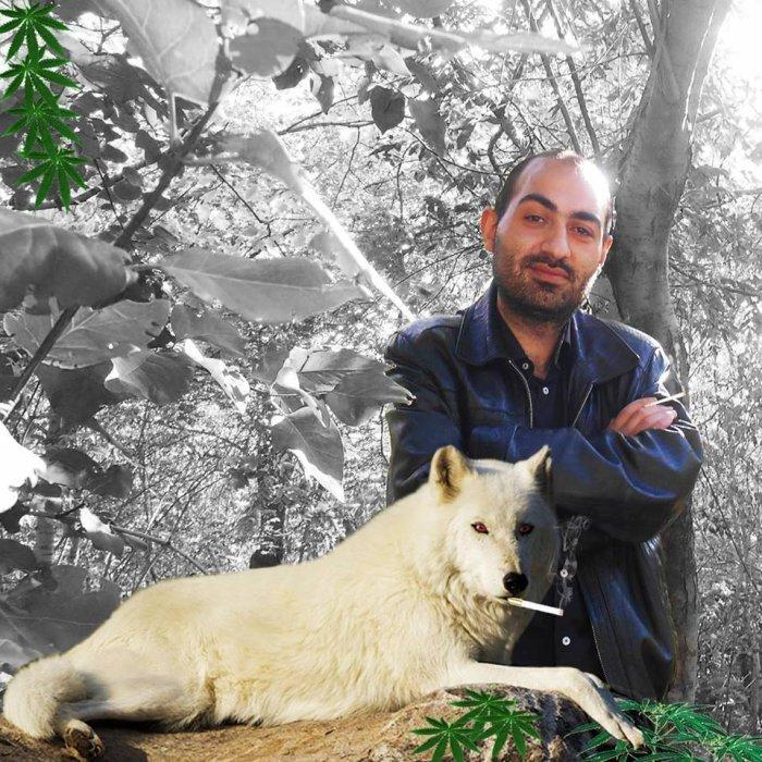 Artashes-Hovhannisyan's blog