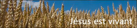 Blog Jésus est vivant