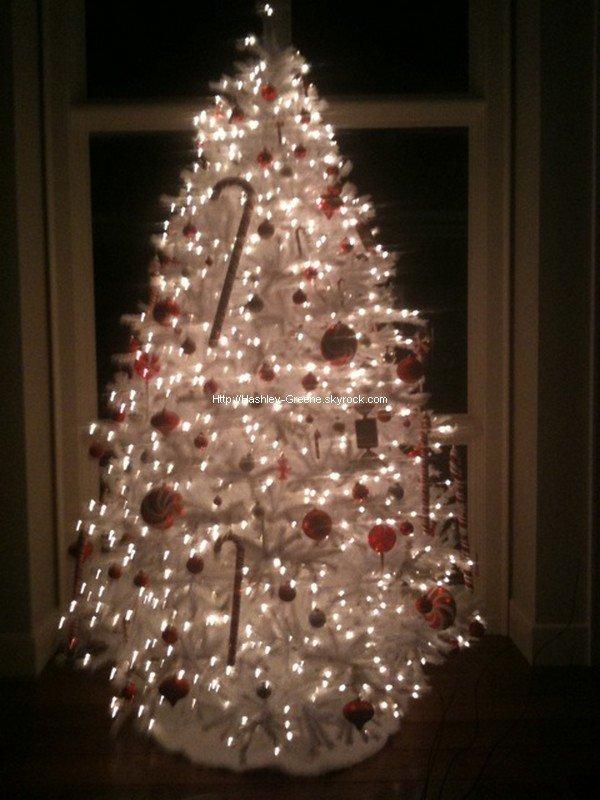Connu << Notre Sapin de Noël est maintenant fini >>. Cette photo  RR36